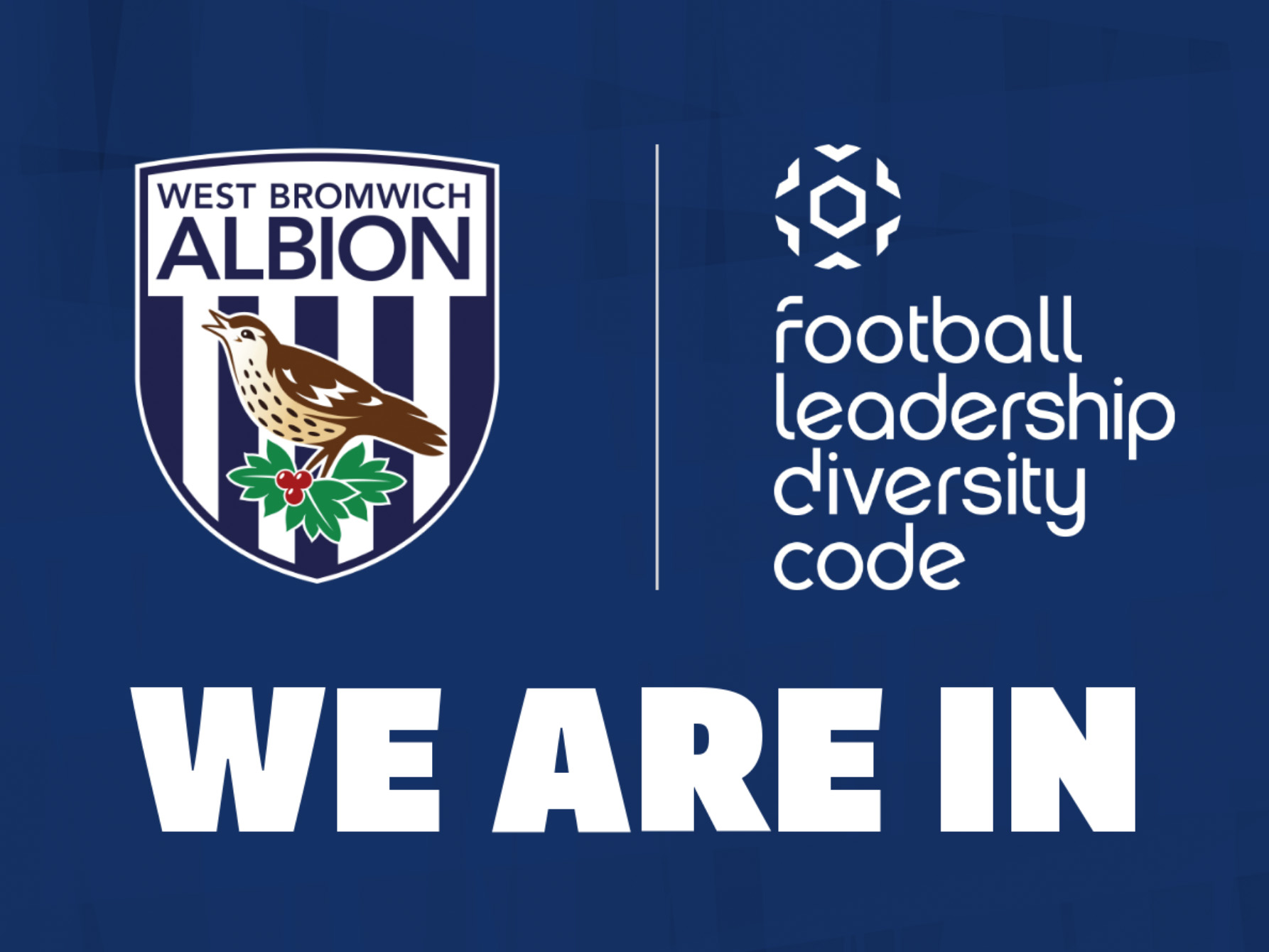 FA Football Leadership Diversity Code