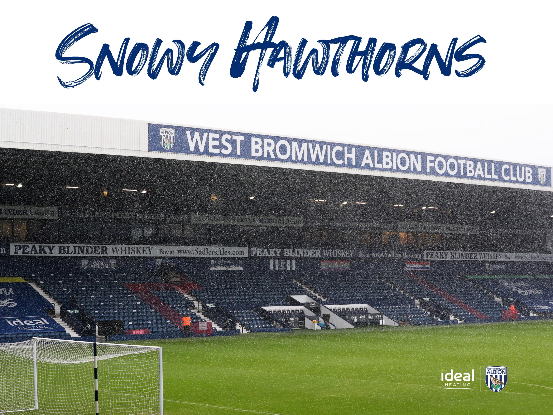 Snowy Hawthorns